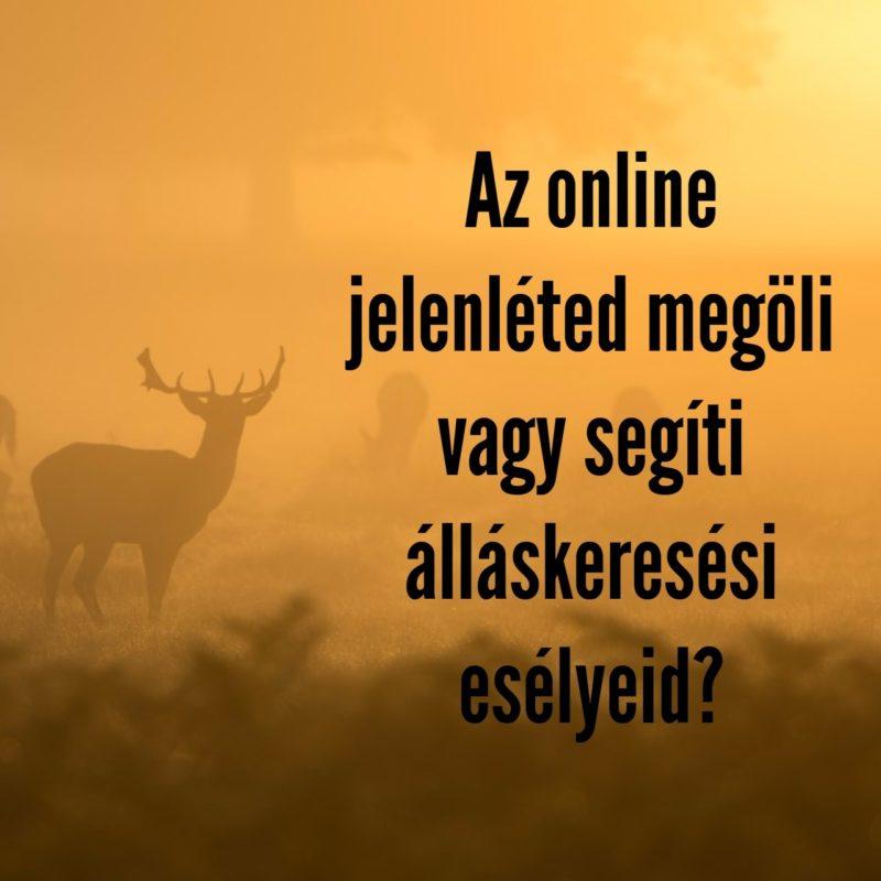 online jelenlét