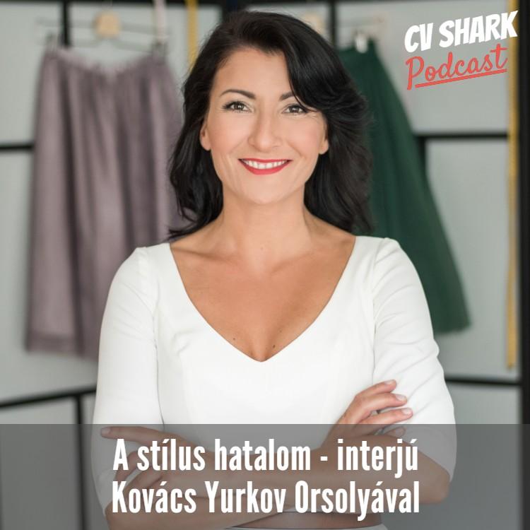 a stílus hatalom - Kovács Orsolya
